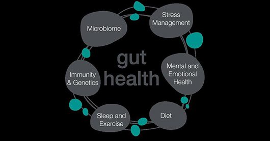 gut health replacement 1